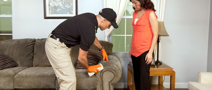 Evansville, IN carpet upholstery cleaning